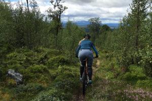 cykla-på-fjället
